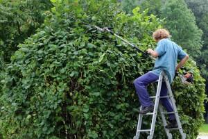 entreprise de jardinage Montauville